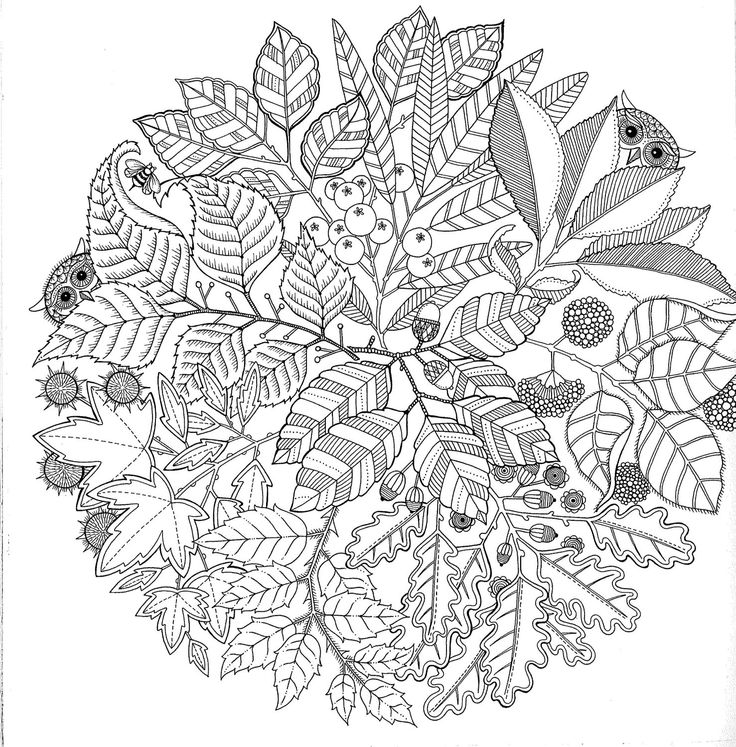 Anti Stress Colouring Book - available locally from BIMBO ONLINE